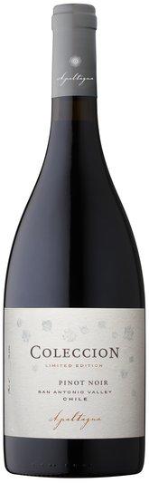 Coleccion Pinot Noir, , Apaltagua